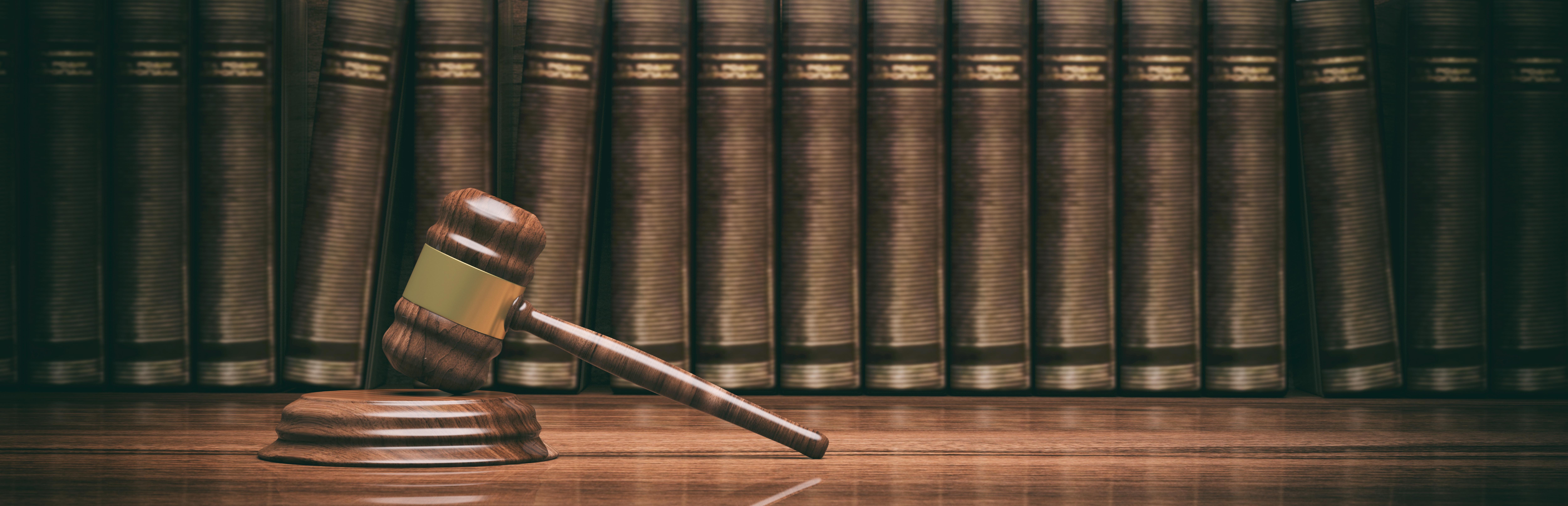 klagorätt i domstol